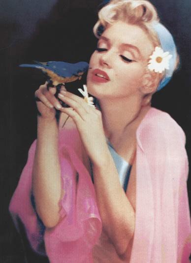 Marilyn Monroe - 6